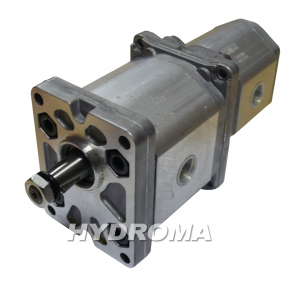 Buy Pump gear tandemirovanny ALPA2-D-20+ALPP1-D-9