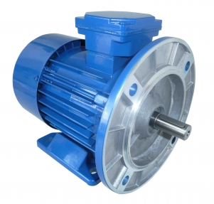 Buy The electric motor the combined PSLg112M-4A-5,5kW-400V-50Hz-IMB35
