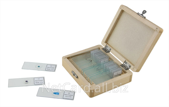 Buy Set of micropreparations for microscopy of 90 samples