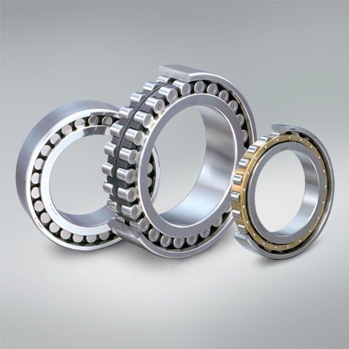 Buy Bearings, radial roller bearings with short cylindrical rollers single-row