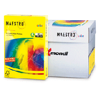 Buy L MAESTRO A4 500 paper. 80 g yellow neon (5)
