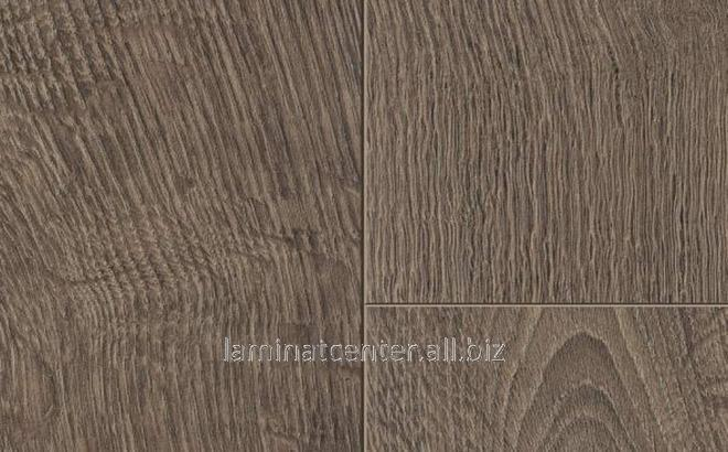 Laminate Of 10 Mm 32nd Class 37268 Sr Oak Of Chicago 1 Band Buy In