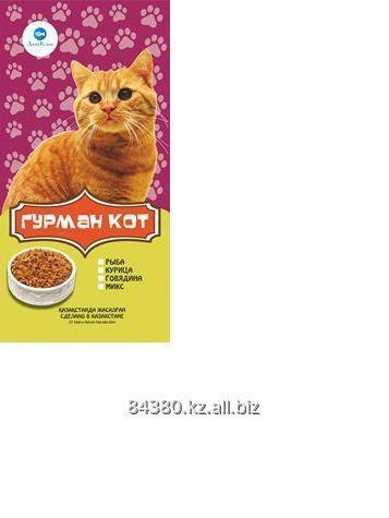 Buy Dry feed the GOURMET the CAT of 7 kg, with chicken