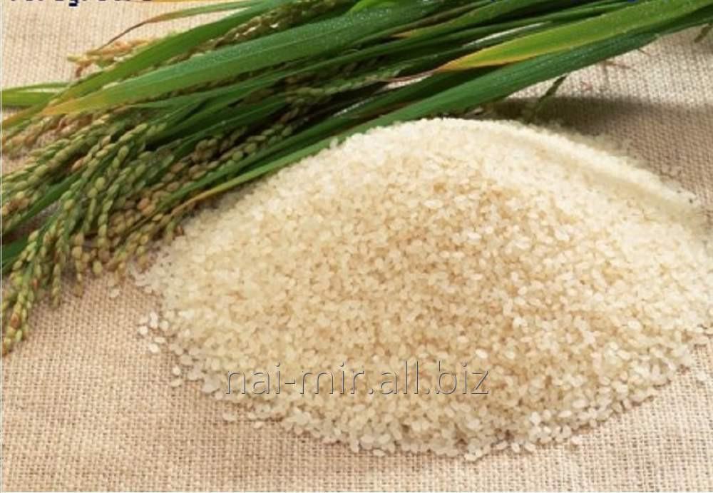 Купить Крупы рисовые от ТОО НАЙ-МИР