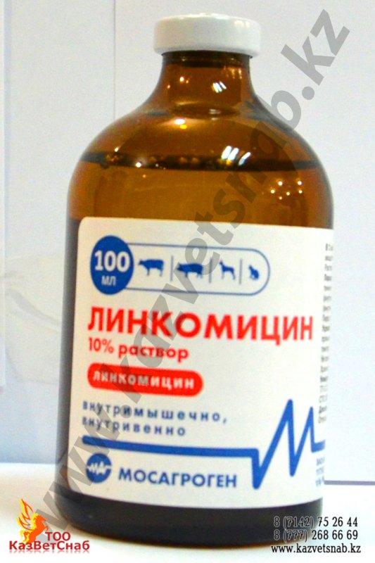Купить Линкомицин 100 мл для ветеринарии