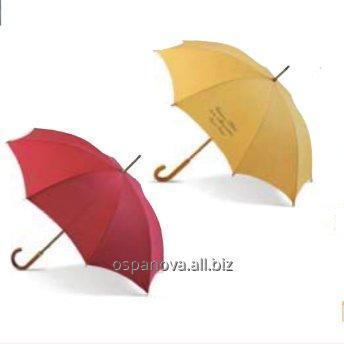 Buy Umbrella of 90 cm