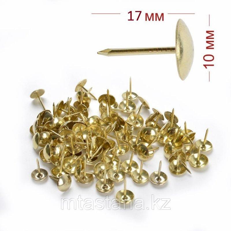 Гвозди декоративные мебельные, 17*10мм (золото)