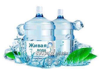 Купить Живая вода