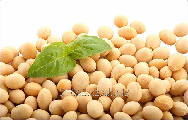 Купить Семена сои