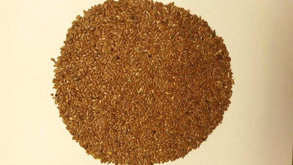 Купить Семена льна масличного