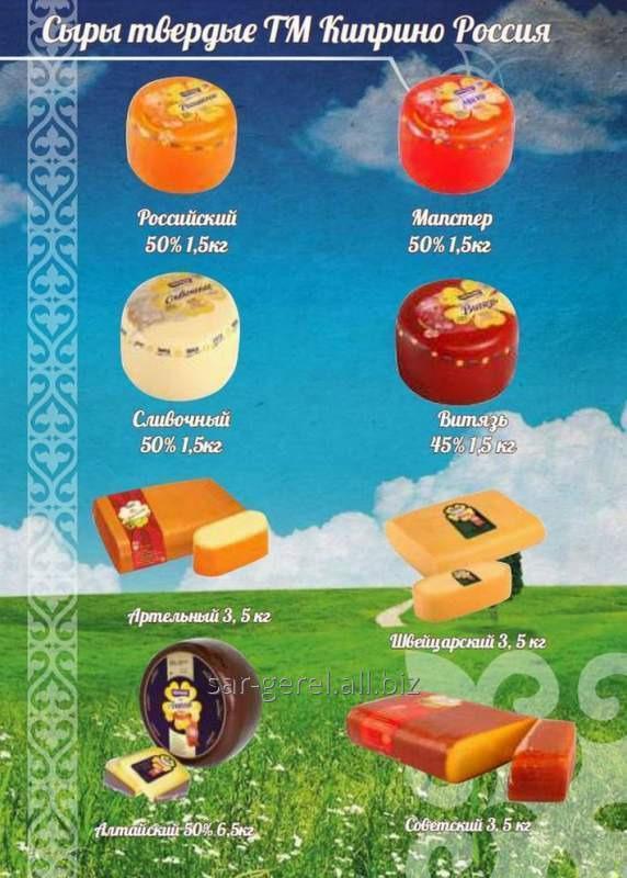 Купить Сыр твердый Киприно Алтайский цилиндр золотой5 кг.