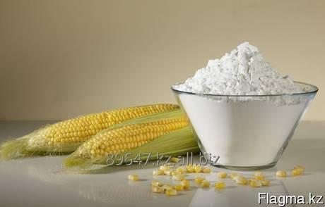 Buy The modified corn starch of hot swelling Kleoram CH2020 (E1422)