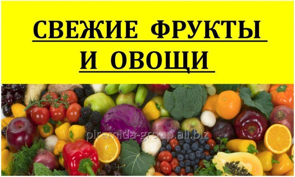 Баннеры в Алматы, арт. 4392429