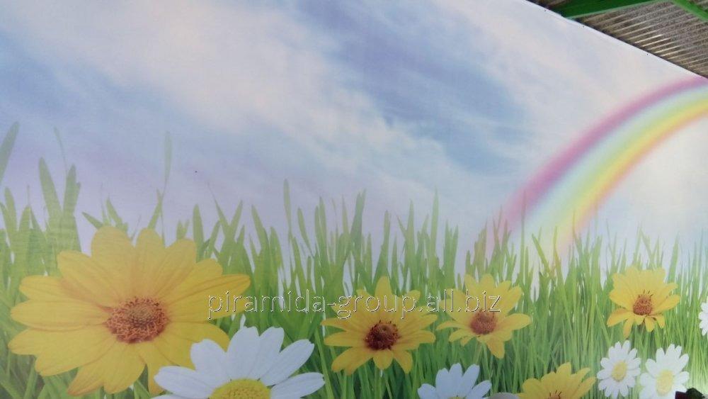 Баннеры в Алматы, арт. 6789803