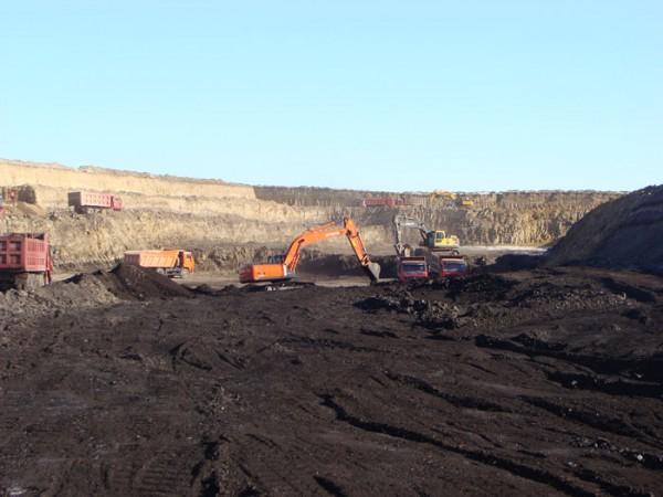 Buy Steam coal, coal