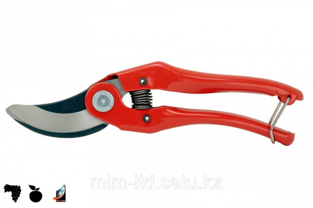 Buy Secateurs of P121-20-F Bahc