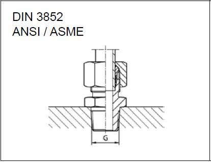 Cоединитель DIN 3852 ANSI / ASME