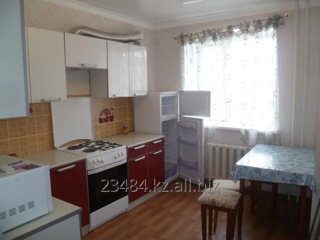 Buy RENT of the ONE-ROOM apartment in a forest glade of Kosshy