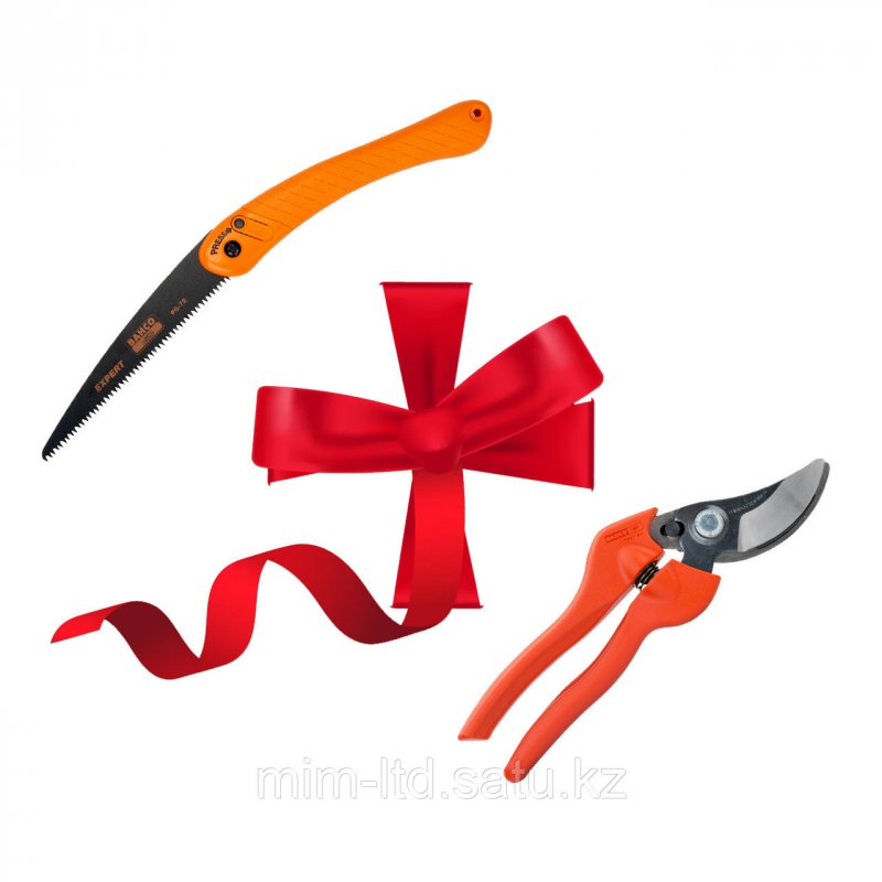 Купить Набор ножовка + секатор GIFTPACK396-HP