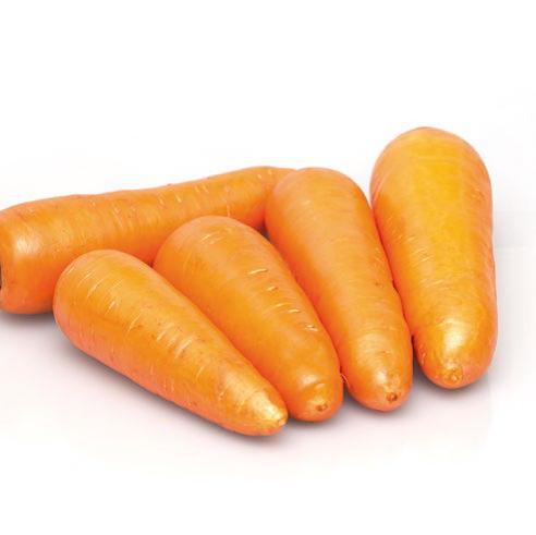 Купить Семена моркови СВ 3118 ДЧ F1