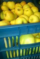 Купить Яблоки голден руш