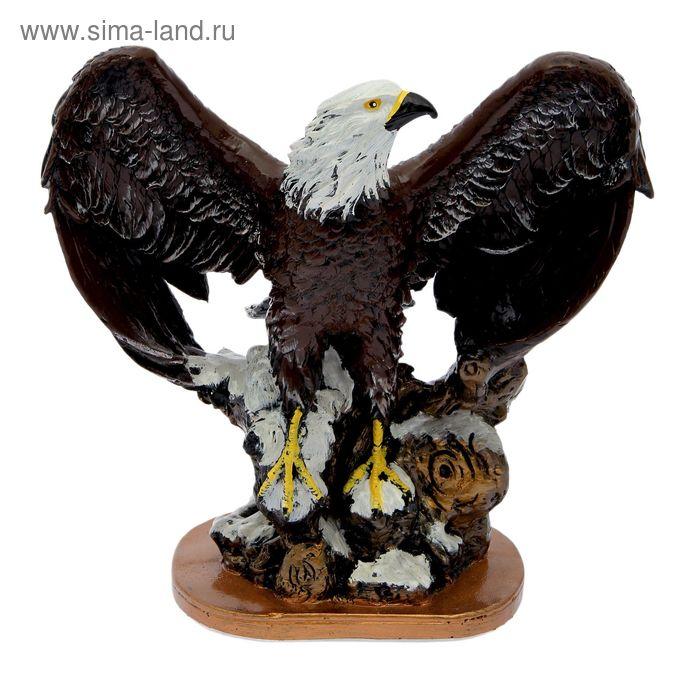 Eagle color open wings of 22х40х40 cm 12000 Code: 2172300 buy in Uralsk