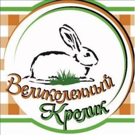 Купить Тушка кролика