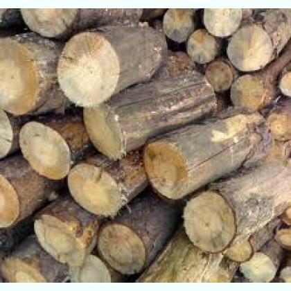 Купить Дрова сосновые