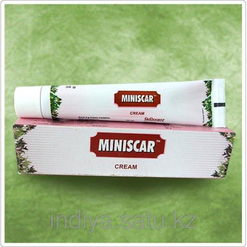 Минискар крем, Miniscar Cream 30 грамм Charak
