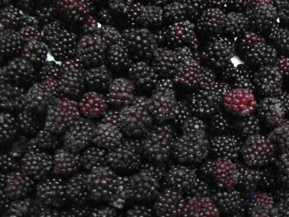 Buy Blackberry