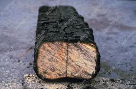 Пропитка огнезащитная Фобоз (для дерева) биоцид
