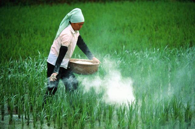 Купить Оптовая торговля пестицидами