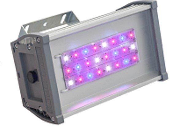 Светильник для основного освещения теплиц и досветки растений OPTIMA-F-055-220-50