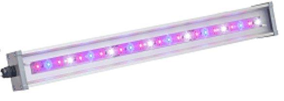 Светильник для основного освещения теплиц и досветки растений LINE-F-055-38-50