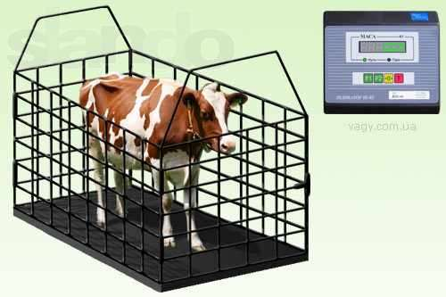 Buy Scales for animals, Scales for KRS 1 ton