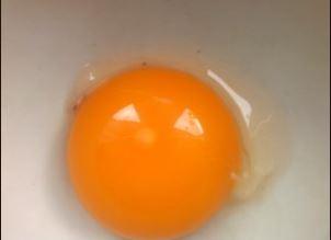 Купить Куриное яйцо желток