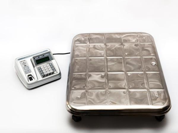 Купить Весы электронные ВЭУ-60С-20-Д-У