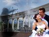 Купить Свадебная фотография