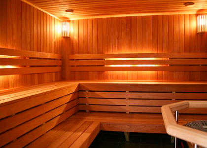Doors for steam rooms and saunas