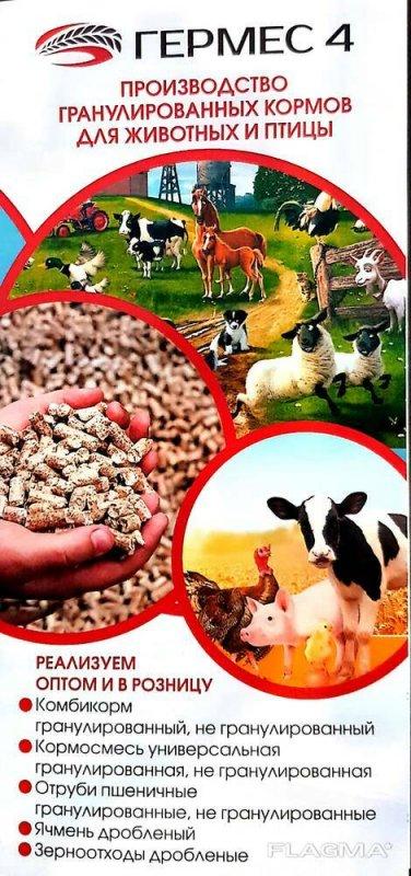 Купить Комбикорм для лошадей Казахстан
