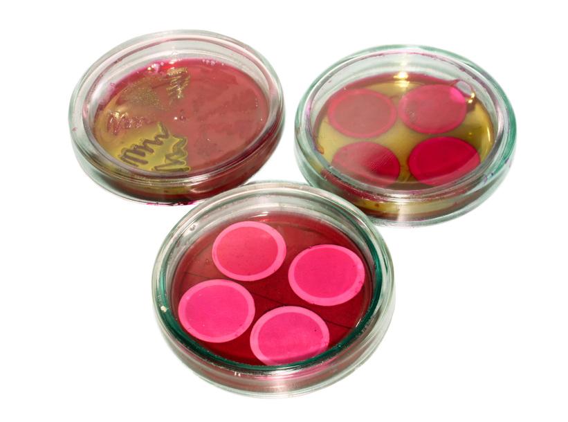 Купить СИБ №4 д/сан. бак. анализа воды мембранным методом (2 теста, 50 опр)
