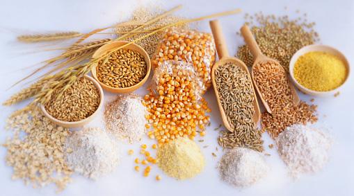 Культуры зерновые. Экспорт из Казахстана