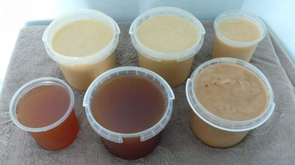 Купить Мёд Оптом, у Пчеловода