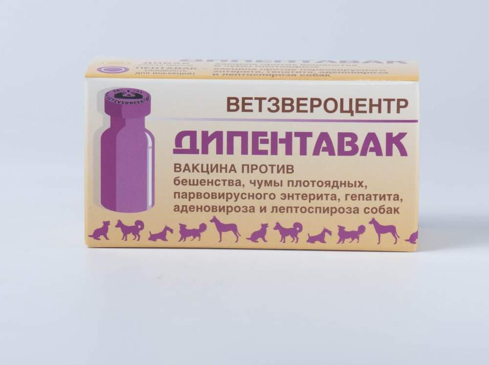 Прививка от бешенства собаке препараты