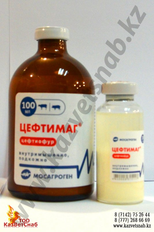Buy Цефтимаг®-semi-synthetic tsefalosporinovy antibiotic of the third generation