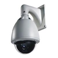 Купить Высокоскоростная купольная PTZ камера S525