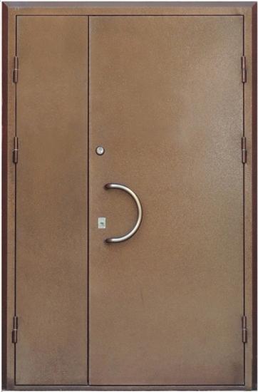 металлические входные двухстворчатые офисные двери