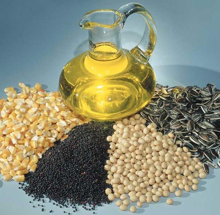 Масличные культуры. Экспорт из Казахстана