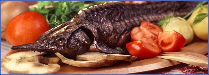 Куплю рыбу астана