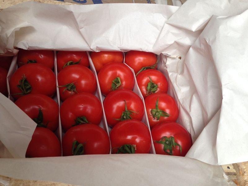 Купить Помидоры узбекские